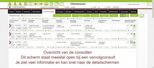 clientdossier consultenpraktijk